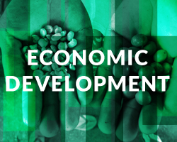 Causes that help communities transform their lives through economic development and social enterprise.
